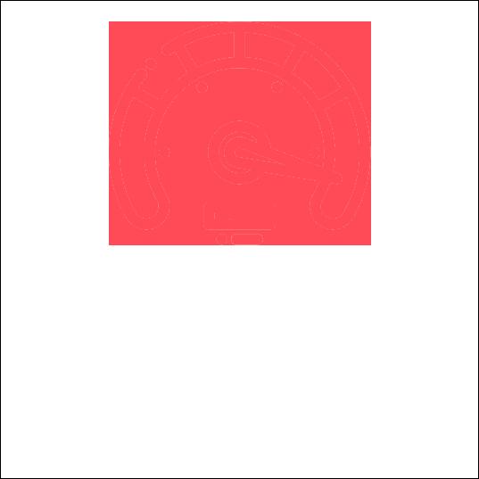 Zrychleni-WordPress